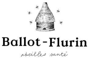 Ballot-Flurin